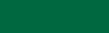 Partner of Millemiglia logo