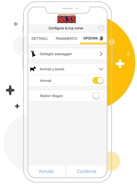 Opzioni taxi Catania