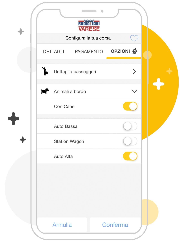 Opzioni taxi Varese